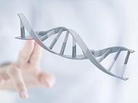 南宁哪里可以做静脉血亲子鉴定?南宁静脉血亲子鉴定多少钱?结果准